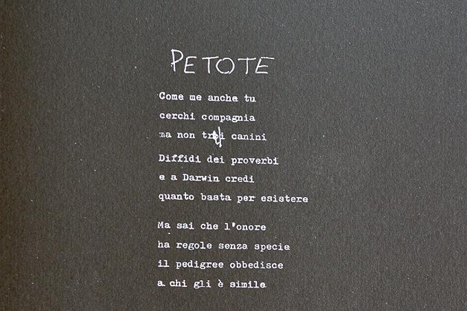 Petote - Giosetta Fioroni, Goffredo Parise, Silvio Perrella